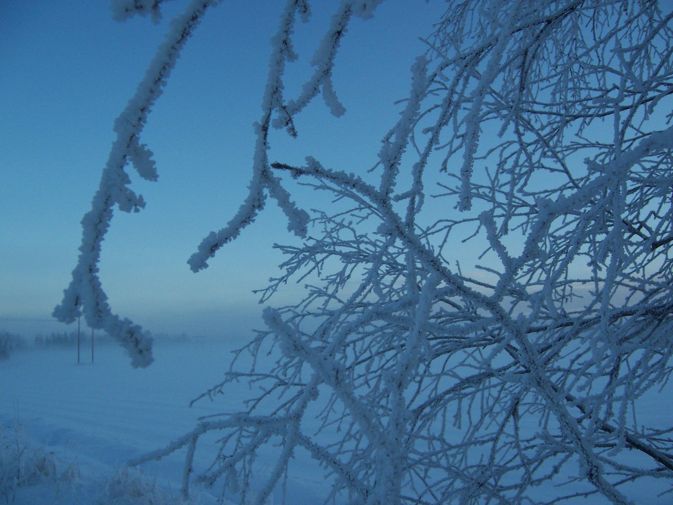 Anderas vinterbild